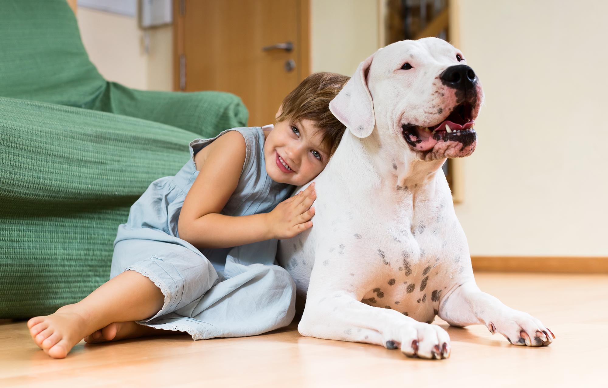 Dog Neutering Services